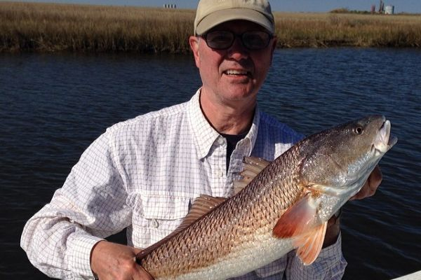 redfish19D7FC2A5B-622E-9A0E-3F90-6B953F3DB7E1.jpg